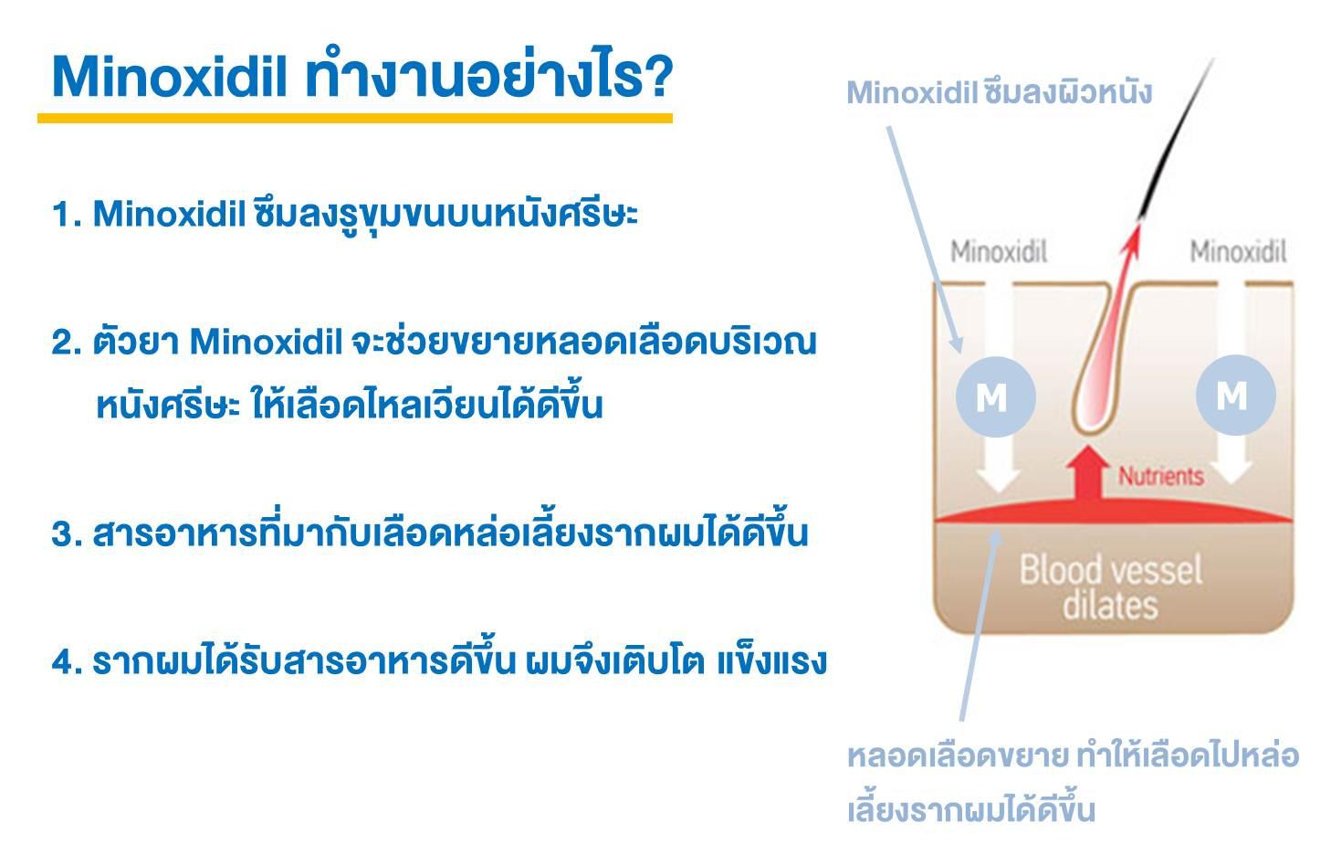 Minoxidil (ไมน๊อกซิดิล) ทำงานอย่างไร, ภาพขั้นตอนการทำงานของ Minoxidil (ไมน๊อกซิดิล), Minoxidil, ไมน๊อกซิดิล, ยาปลูกผม
